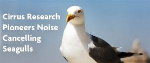 Cirrus Pioneers Noise Cancelling Seagulls